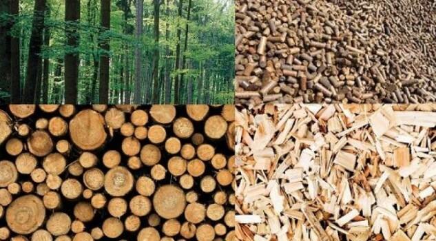 biomasse solide