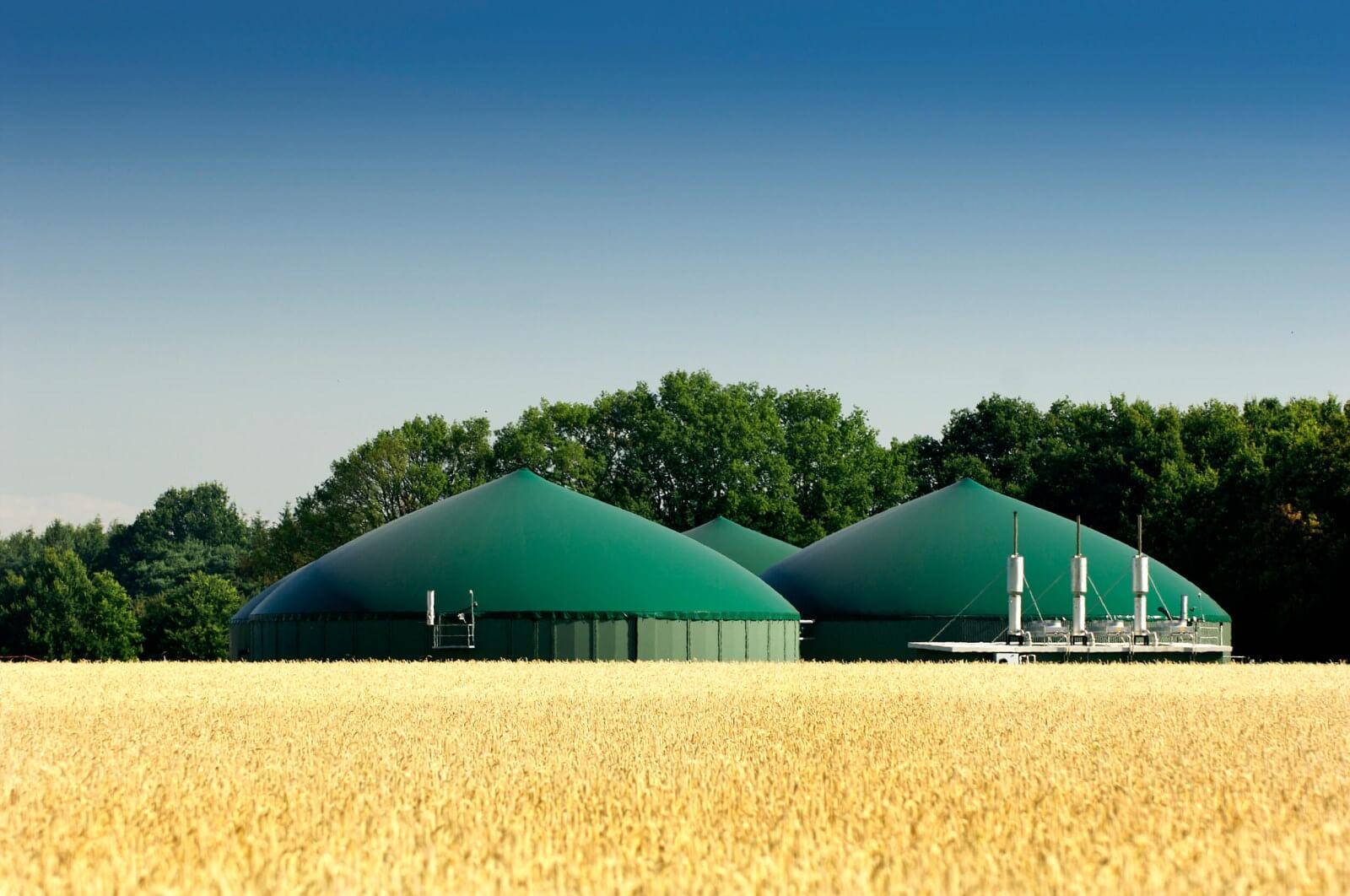 Cos'è e come funziona il Biogas?