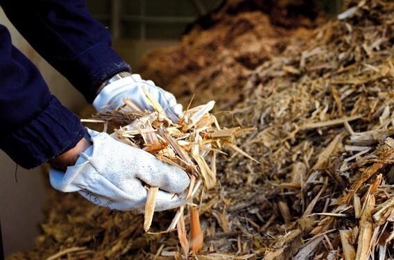 biomasse legnami