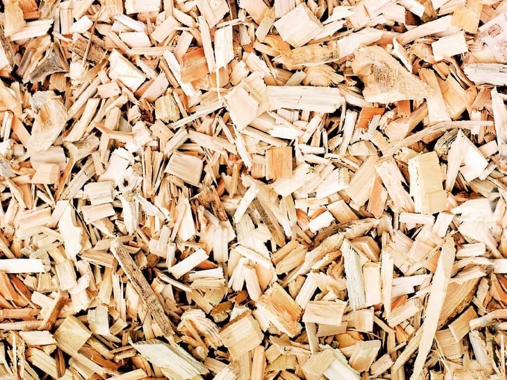 Biomasse legno