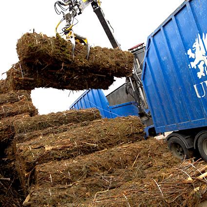 biocarburanti derivati da biomasse