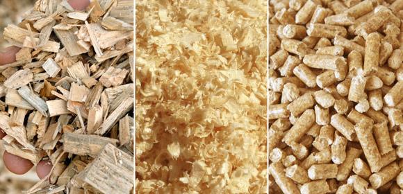 tipi di biomasse solide