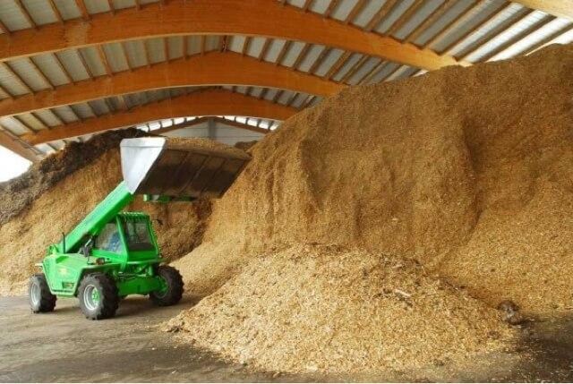 Cosa si Intende per Biomasse Vegetali?