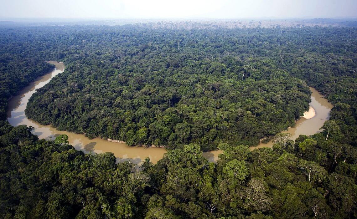 Il Brasile è il Primo Produttore di Elettricità da Biomasse al Mondo?