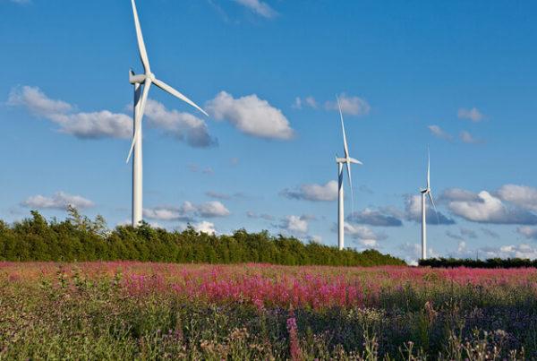 energia eolica in francia
