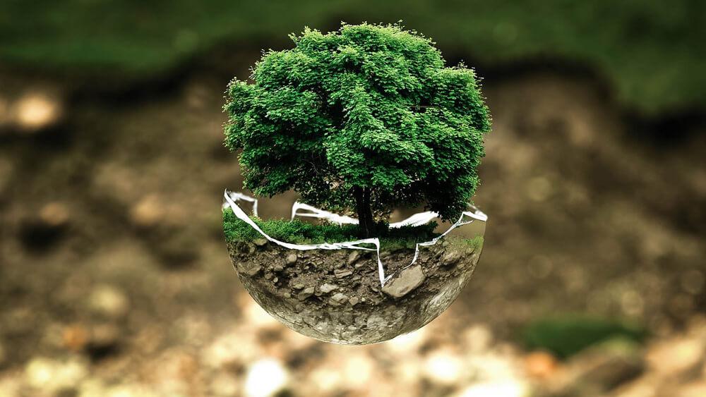 come ridurre impronta ecologica