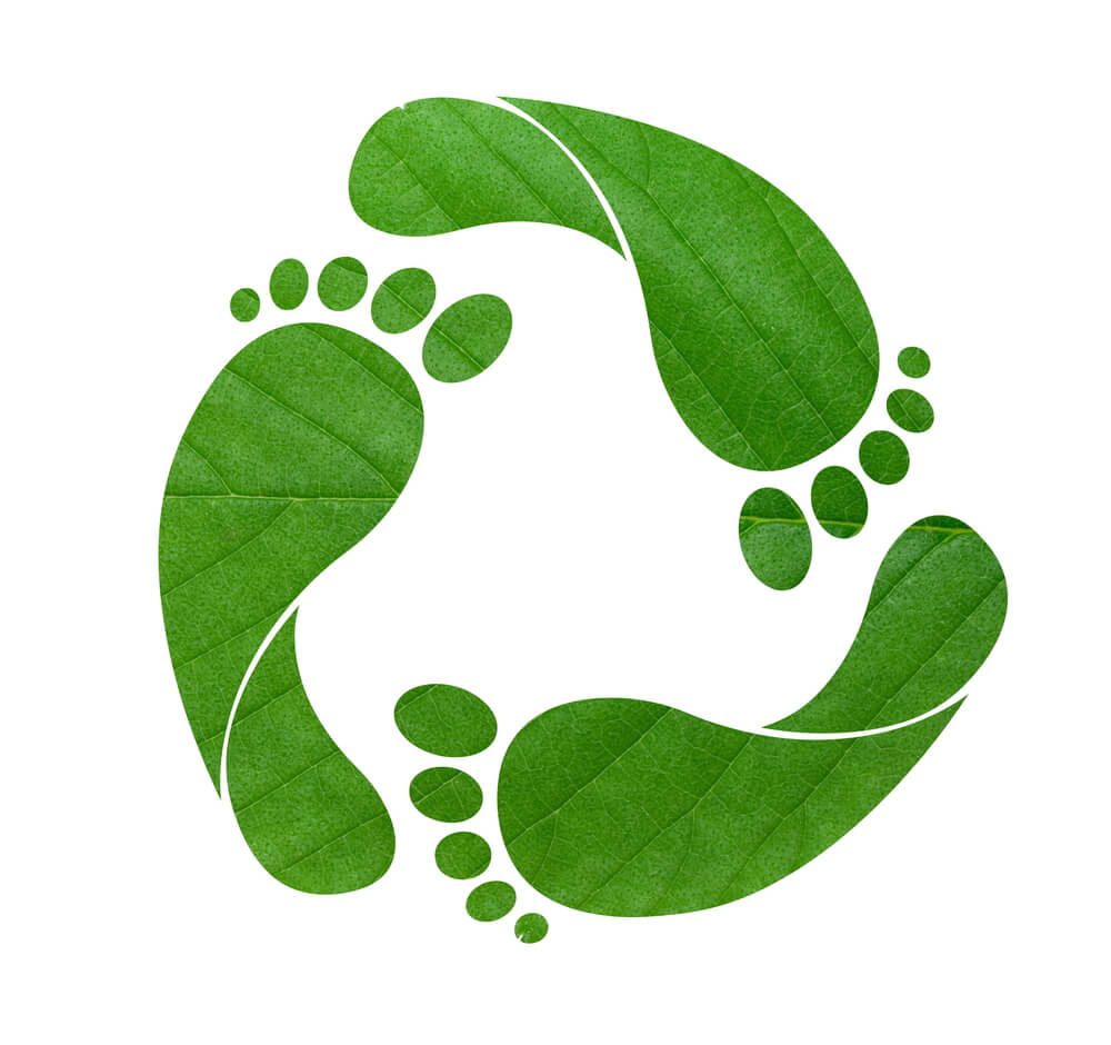 footprint impronta ecologica