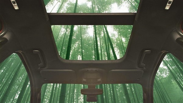 Auto in bamboo ford