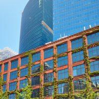 Come rendere l'ufficio più ecologico