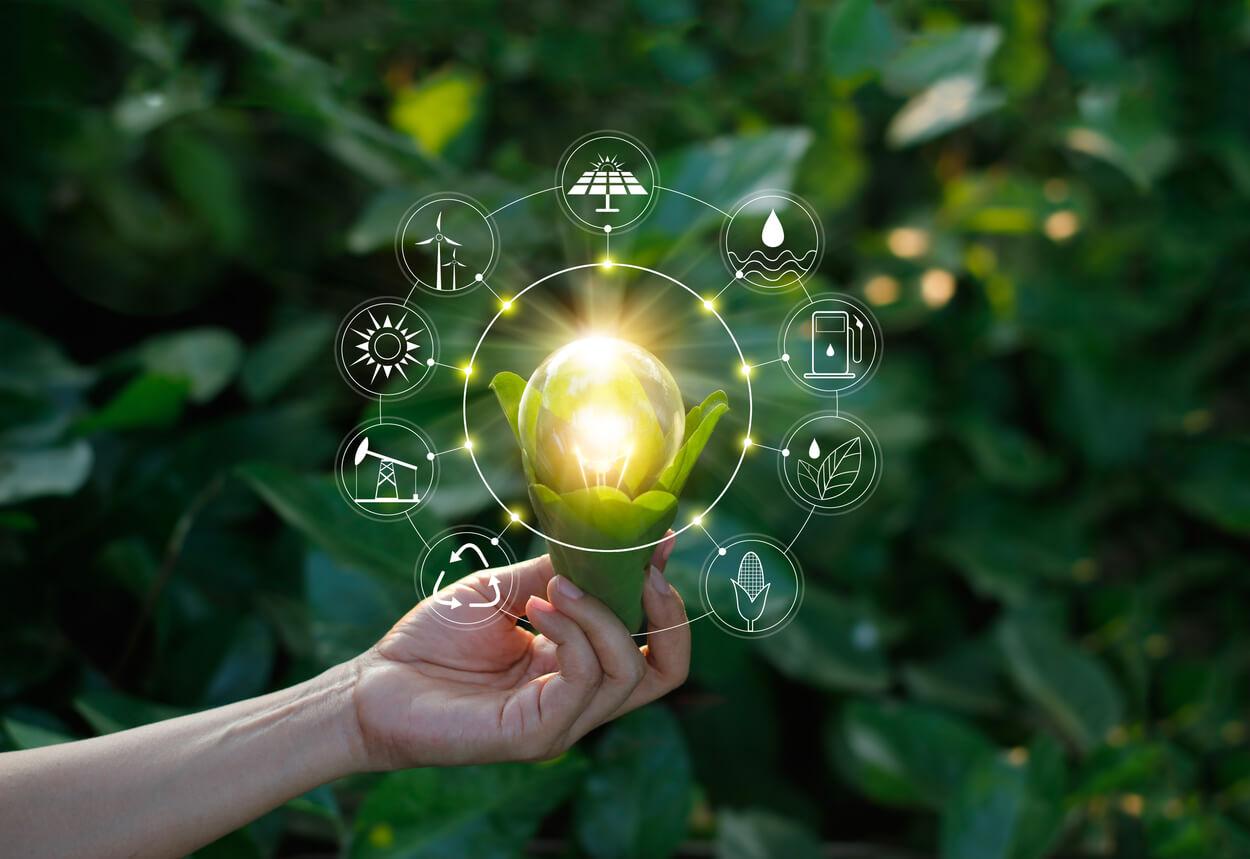 Life Cycle Assessment : Il ciclo di vita di un prodotto e il suo impatto ambientale
