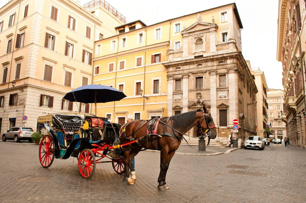 in carrozza in giro per roma