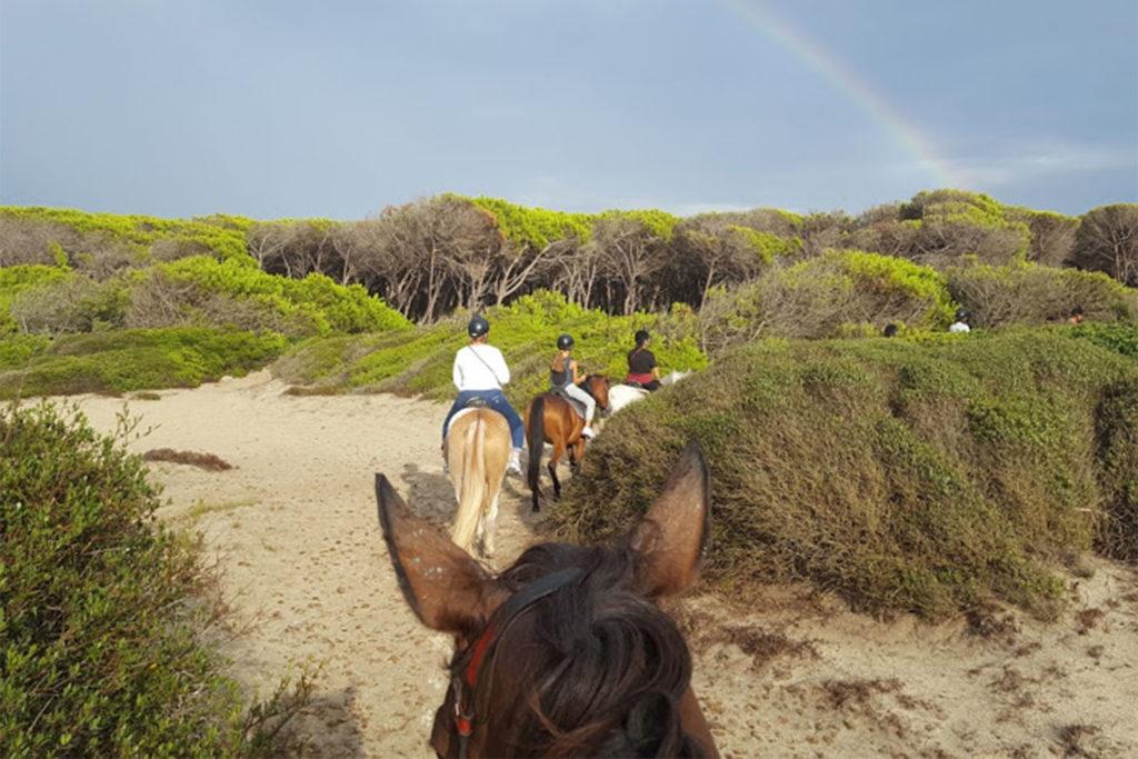 passeggiata a cavallo a roma